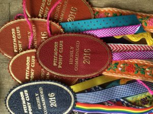Leather rosettes with brightly coloured ribbons