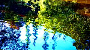 Bright blue sky and green trees reflected in rippled water.