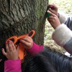A child with red nail polish holds a mouse template up against a tree to rub over it in crayon.