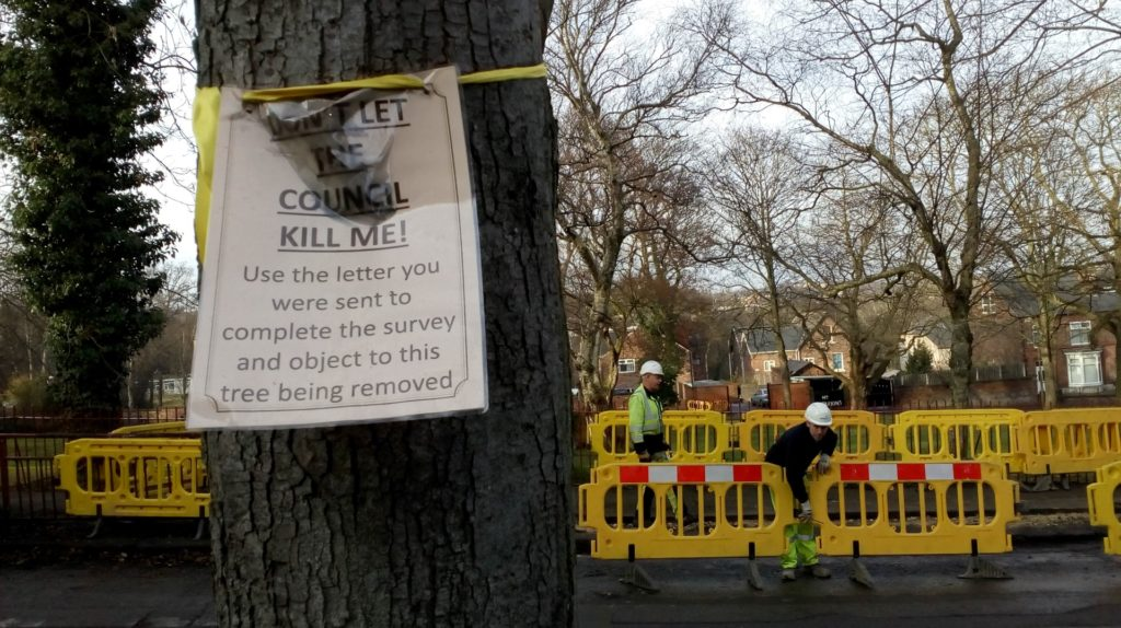 """A tree with a yellow ribbon and sign reading """"Don't Let The Council Kill Me. Use the letter you were sent to complete the survey and object to this tree being removed."""" Council road workers are in the background."""