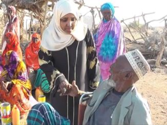 A Somaliland woman in Islamic dress shaking the hands of a Somaliland man. There is sand on the floor, trees and people in the background, the sun is shining.