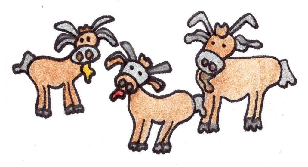 Three billie goats gruff