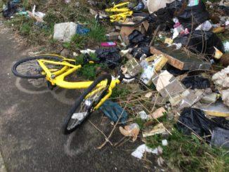 Goodbye yellow bike rides