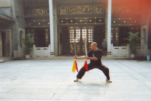 Five Animals Lau Gar Kung Fu Training @ St James Church