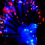 Peacock Lantern