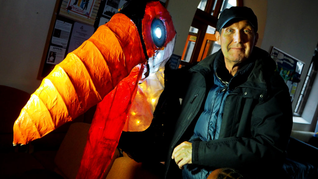 Toucan Lantern
