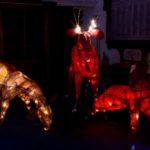 Deer Lanterns