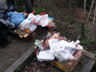 Fly Tipping Crabtree Ponds