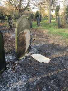 Cemetery headstones and charred Japanese knotweed