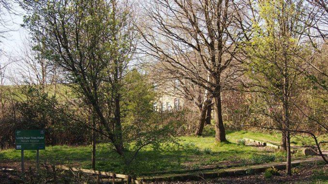 Parkwood Springs