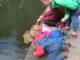 Children pond dipping