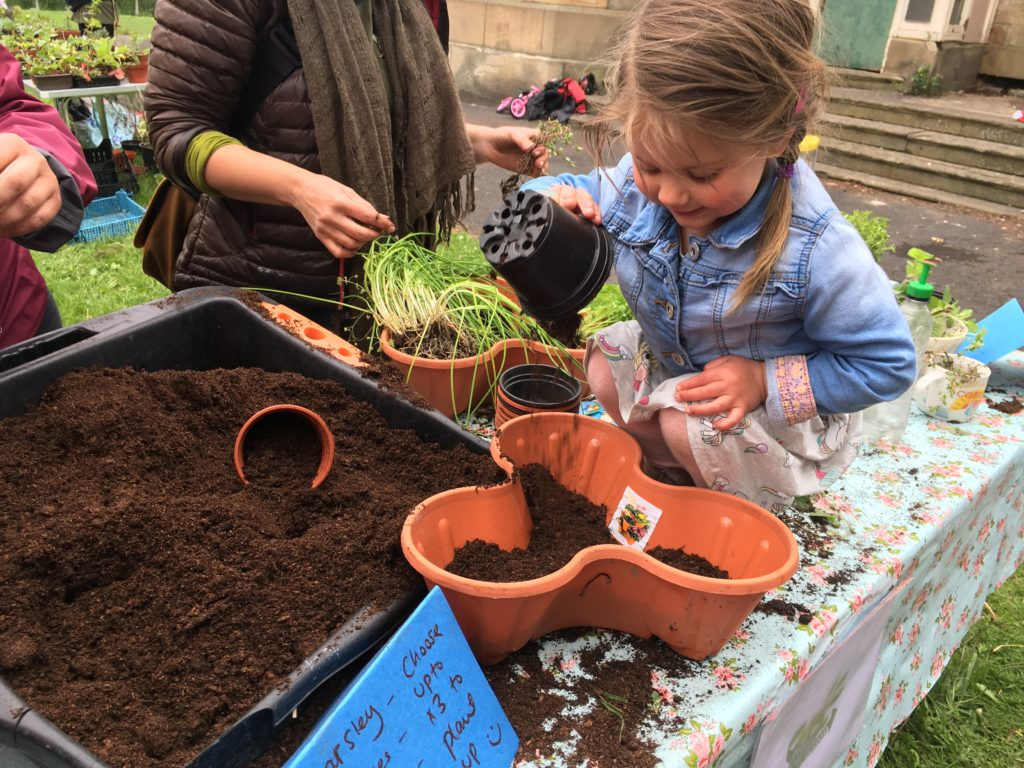 Filling the plant pots