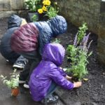 Children plant flowers and plants around Abbeyfield Park shelter.