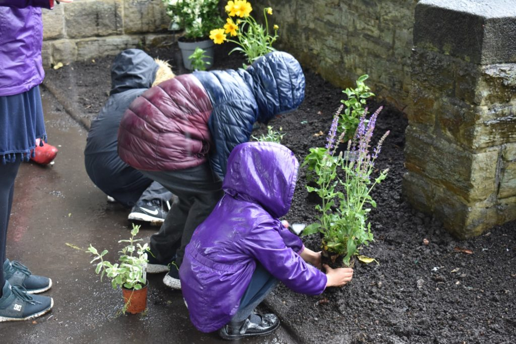 Abbeyfield shelter – planting flowers