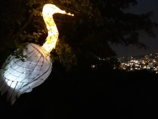 Heron lantern overlooking the city. Photo by Jackie Jones.