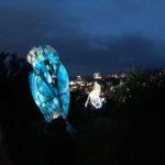 The kingfisher lantern returns. Photo by Jackie Jones.