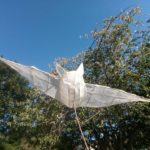 White tissue paper bat lantern.