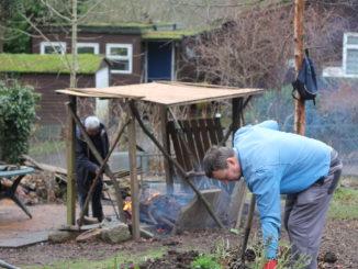 Oasis gardening for health