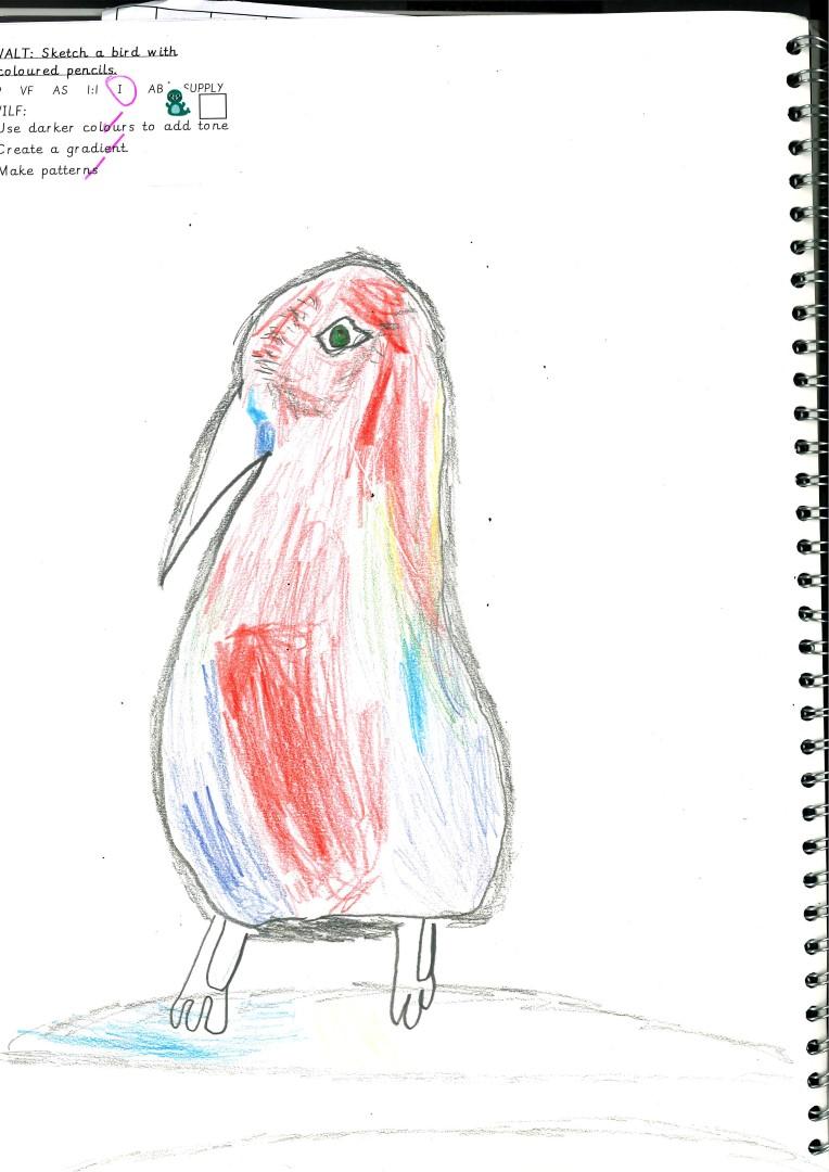 Jaroslav's falconry day drawing.