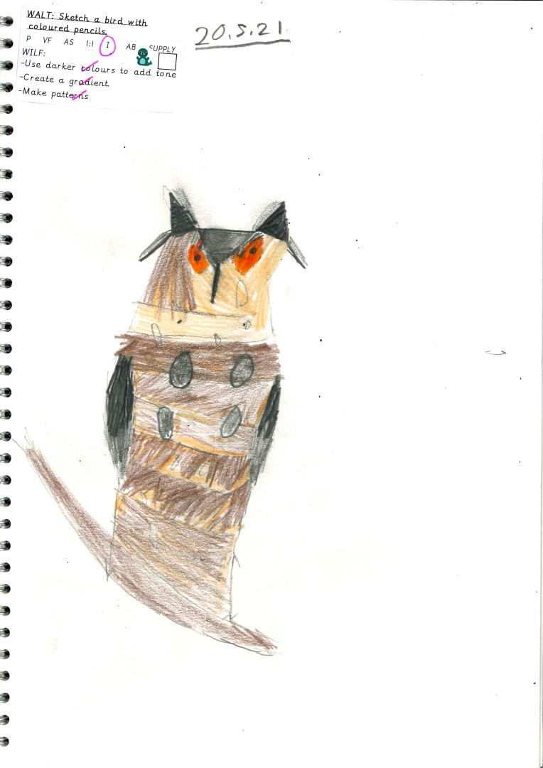 Miki's drawing of an owl.