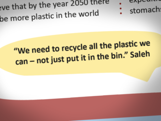 Plastic Pollution feature