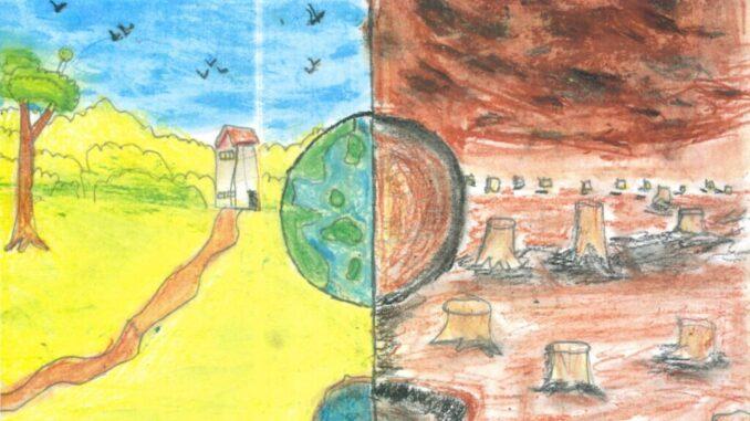 Deforestation picture by Olivia Ugo